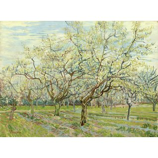 The White Orchard
