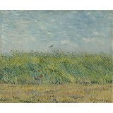 Wheatfield with Partridge - Card / A4 reproduction