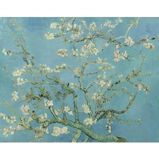 Almond Blossom - Card / A4 reproduction