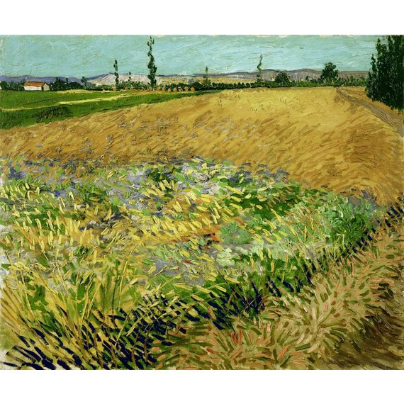 Wheatfield - Card / A4 reproduction