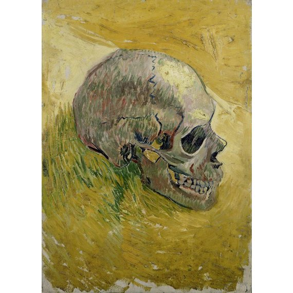 Skull - Multimedia / Film / Video