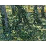 Undergrowth - Card / A4 reproduction