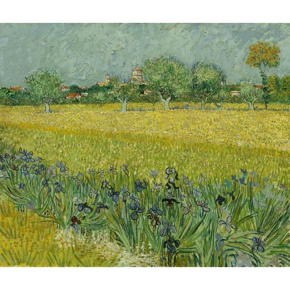 Field with Irises near Arles - Book / Magazines / Flyer