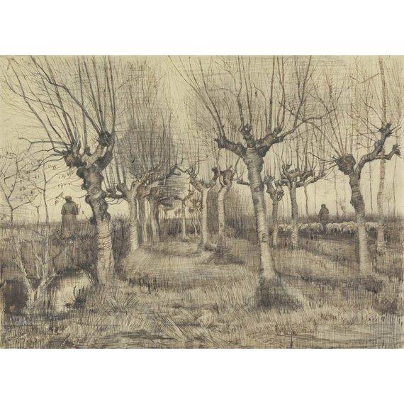 Pollard Birches - Card / A4 reproduction