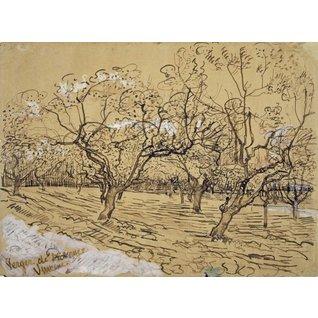 Provençal Orchard