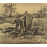 Peasant Woman Lifting Potatoes