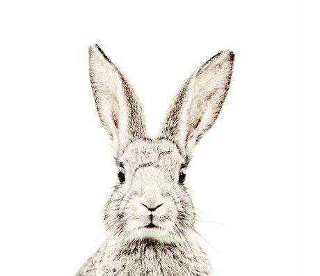 Groovy Magnets Kindermagneetbehang konijn small vinyl met ijzerdeeltjes 63,5x265 cm