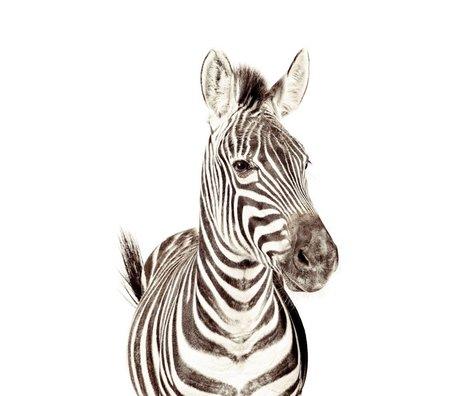 Groovy Magnets Kindermagneetbehang zebra small vinyl met ijzerdeeltjes 63,5x265 cm