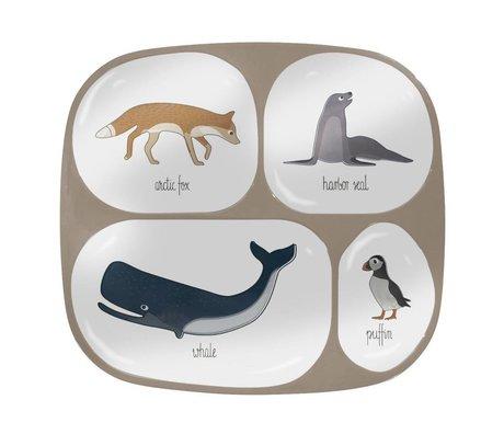 Sebra Kinderbord Arctic animals vier vakjes  licht bruin melamine 24x21x2cm