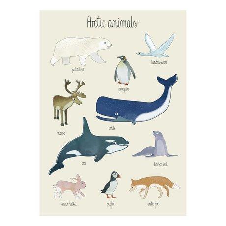 Sebra Poster Arctic animals multicolor paper 50x70cm