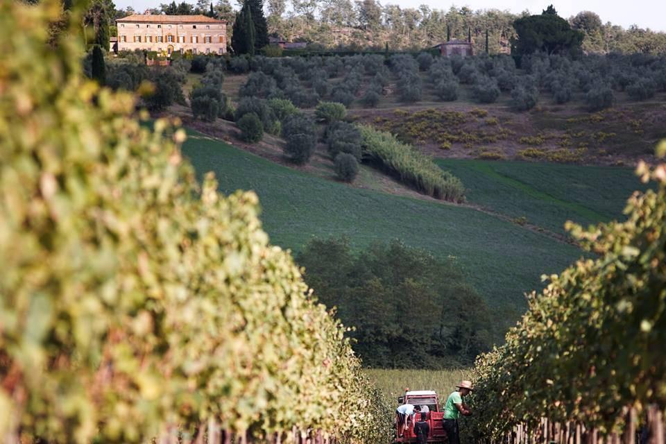 Montechiaro Montechiaro Arteliquida Bianco 2006 MAGNUM 1,5L
