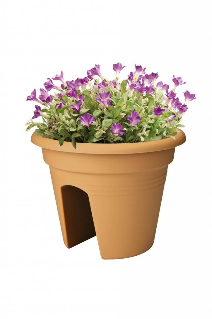 Elho Elho Green Basics Flowerbridge 30 cm