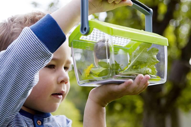 HABA Haba Terra Kids  Insectendoos