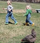 Paardenhengsel voor kinderen