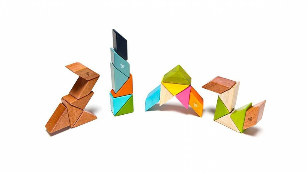 Tegu Tegu magnetische hout blokken (6 stuks zakformaat)