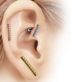 1,2mm Ohrpiercing für Tragus, Helix oder Lobe