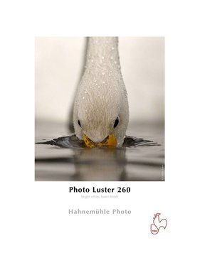 Hahnemuhle Photo Luster 260g rol 432mmx30m