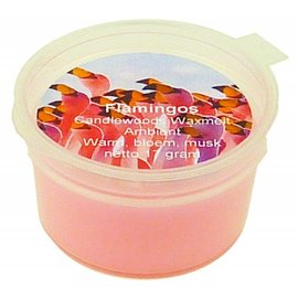Wax Melt Flamingos