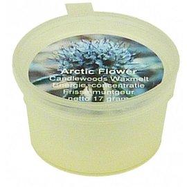 Aromatherapie wax melt Arctic Flower