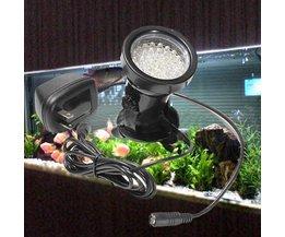 Verlichting voor vijver, tuin en aquarium
