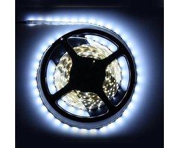 LED Strip Wit 5 Meter