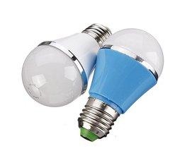 LED Globelamp 3W