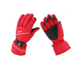 Wintersport Handschoenen