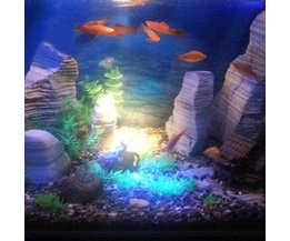 LED Verlichting Aquarium