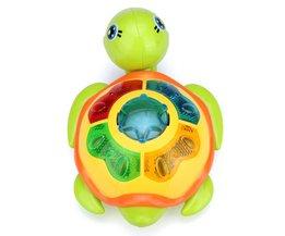 Educatief Schildpad Speelgoed