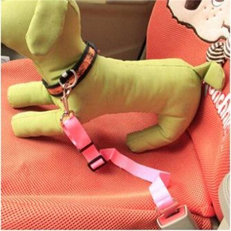 Hond Vervoeren in Auto Veiligheidsriem