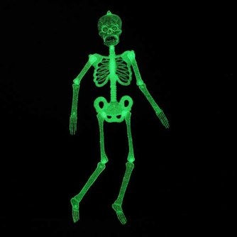 Glow in the Dark-Skelet