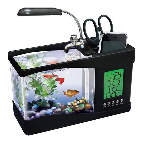 mini aquarium online kopen i myxlshop. Black Bedroom Furniture Sets. Home Design Ideas