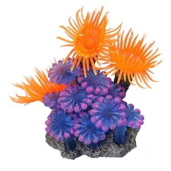 Nep Koraal voor Aquarium