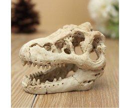 Ornament Aquarium Krokodil Skelet