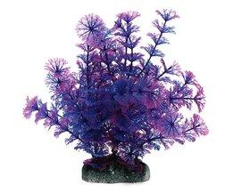 Kunst Aquariumplanten