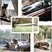 Ophangbare Kattenstoeltje