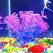 Nepplant Aquarium