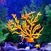 Decoratie Koraal Aquarium Lichtgevend