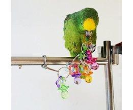 Speelgoed voor Papegaaien