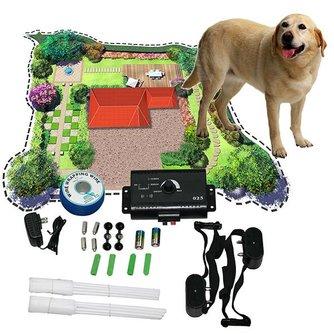 Veiligheidsriem Voor Hond