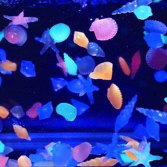10 Fluoriserende Aquariumstenen