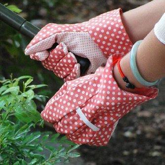 Handschoenen Voor In De Tuin