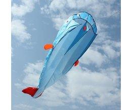 3D Vlieger Vis