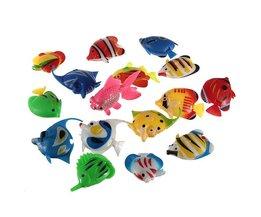 Aquarium Decoratie Tropische Vis