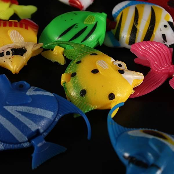 Online een Aquarium Decoratie bestellen? I MyXLshop (Tip)