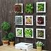 Decoratieve Kunstplant voor aan de Wand