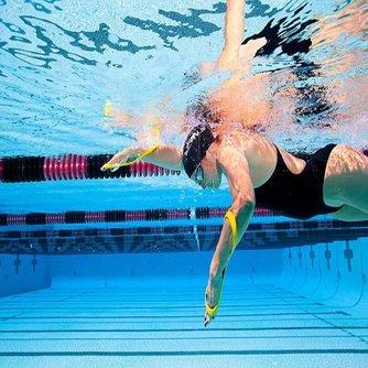 Achtvormige Zwempeddels