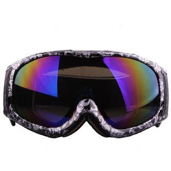 Ski Brillen In Diverse Kleuren