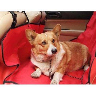 Waterdichte Hondenmat voor in de Auto