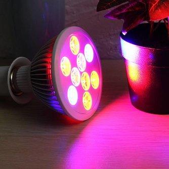 Plantenlamp met Rood en Blauw Ledlicht 9W